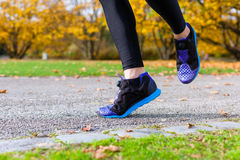 Woman sport running through autumn park Stock Photo