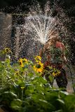 Woman spray water home garden Royalty Free Stock Image