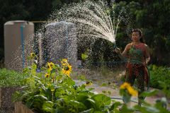 Woman spray water home garden Stock Photography