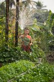 Woman spray water home garden Stock Photo