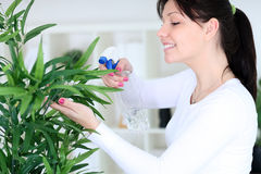 Woman spraying flowers Royalty Free Stock Images