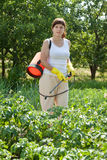 Woman spraying potato plant Royalty Free Stock Image