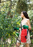 Woman spraying tomato Royalty Free Stock Photography