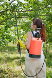 Woman spraying tree Stock Images
