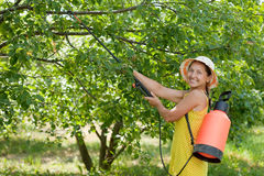 Woman spraying tree branches. In garden Stock Photo