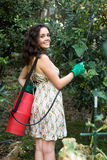 Woman spraying tree branches Royalty Free Stock Image