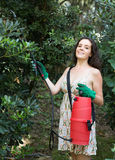 Woman spraying tree branches Stock Image