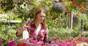 Woman spraying water on flowers. Horizontal outdoors shot of smiling young woman splashing water and doing horticulture job in the garden stock video footage