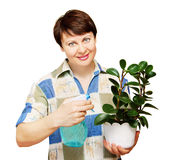 Woman sprays by water a plant Royalty Free Stock Photos