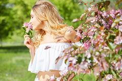Woman in spring blossom park. Stock Photos