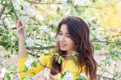 Woman in spring blossom. Young naturally beautiful woman near th Stock Image