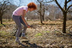 Woman spring cleaning the orchard. Caucasian woman spring cleaning the orchard, gathering cut branches to throw them away Royalty Free Stock Photos
