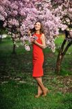 Woman in spring garden Royalty Free Stock Image