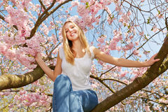 Woman in spring sitting in blooming cherry tree Stock Photography