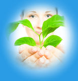 Woman with a sprout Royalty Free Stock Image