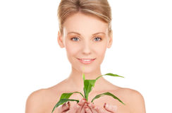 Woman with sprout Stock Image
