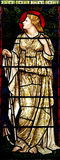 Woman in stained glass Royalty Free Stock Photo