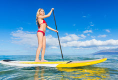 Woman on Stand Up Paddle Board. Attractive Woman on Stand Up Paddle Board, SUP, Tropical Blue Ocean, Hawaii Royalty Free Stock Images