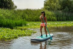 Woman stand up paddleboarding. On lake. Young girl doing watersport on lake. Female tourist in swimwear during summer vacation Royalty Free Stock Image