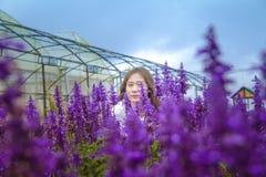 Woman Standing Behind Purple Petaled Flowers Royalty Free Stock Image