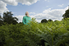 Woman Standing Among Ferns Stock Images