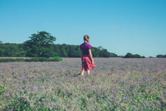 Woman standing in field of purple flowers. A young woman is standing in a field of purple flowers on a sunny summer day Royalty Free Stock Images