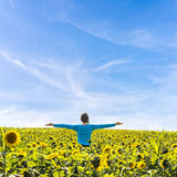 Woman standing in field of sunflowers Royalty Free Stock Images