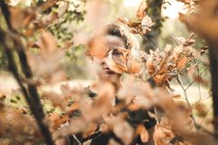 Woman Standing in Front of Brown Leafed Trees stock images