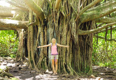 Woman standing in front of incredible banyan tree Stock Image