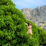 Woman standing in green plants on the mountains Stock Photo