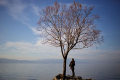 Woman standing by a leafless tree on a lake coast. Spring is arriving, woman is meditating by the leafless tree on a beautiful lake coast royalty free stock image