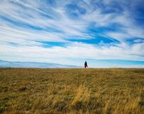 Woman standing in a meadow under the blue cloudy sky
