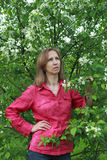 A woman standing near the apple blossom Stock Photography