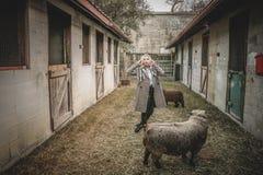 Woman Standing Near Sheep Stock Image