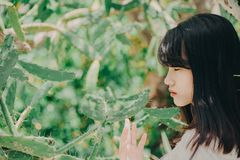 Woman Standing Near and Touching Cactus stock image