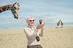 Woman is standing next to a giraffe and photographs Stock Photo