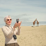 Woman is standing next to a giraffe and photographs Stock Image