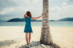 Woman standing by palm tree on tropical beach. A young woman is standing by a palm tree on a tropical beach Royalty Free Stock Images