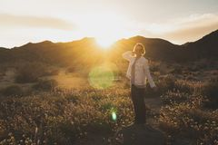 Woman standing on a rock in a wildflower field at dusk in Joshua Tree National Park California. Sunflare in photo stock photo