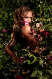 Woman standing among the rose bushes Stock Images