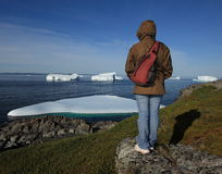 Woman Standing on Shore by Icebergs Stock Photos