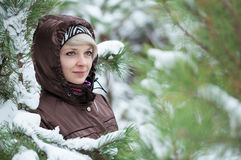 Woman is standing among the snow covered pines. Royalty Free Stock Photos