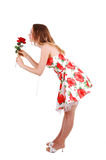 Woman standing in studio. Lovely young woman in high heels standing in the studio with a red rose, long Royalty Free Stock Images