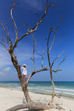 Woman standing in a tree looking out to the ocean. Stock Photography