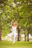 Woman standing in tree pose Royalty Free Stock Image