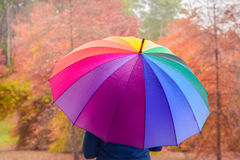 Woman standing under colorful umbrella Stock Images