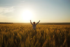 Woman stands in a field of ripe wheat Royalty Free Stock Photos