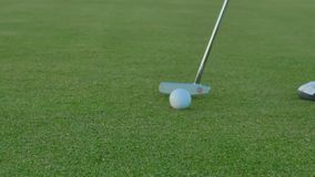 The final blow with putter in golf. Woman stands near the golf ball on green lawn and makes the final blow over the ball with putter. The ball falls into a hole stock footage