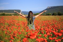 Woman stands with open arms on summer poppy field. Beautiful woman with long brown hair in sundress with ethnic flower pattern stands with open arms on field of Royalty Free Stock Image