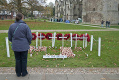 A woman stands by the popies of rememberance Stock Photo